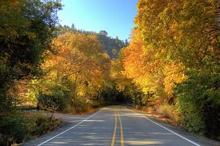 The Long Road Home, Carolyn M. Bowen