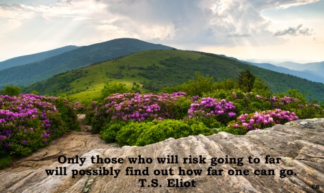 What are you willling to risk?, The Writing Life, Carolyn Bowen Author