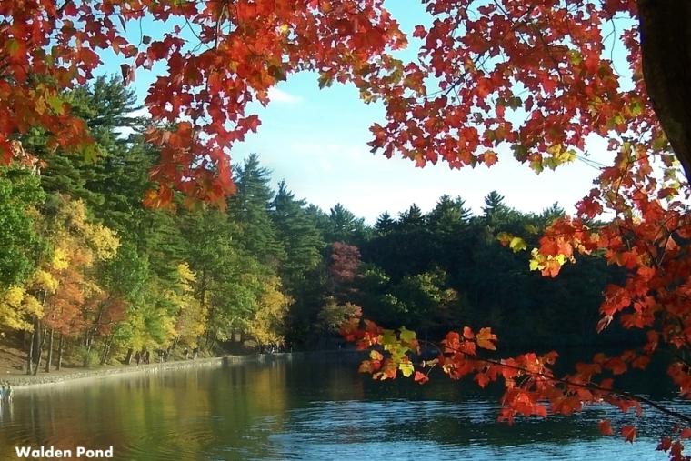 Hello October, Carolyn M. Bowen Author, The Writing Life