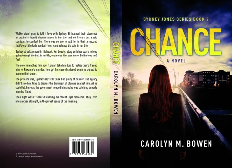 Chance A-Novel Paperback Preview
